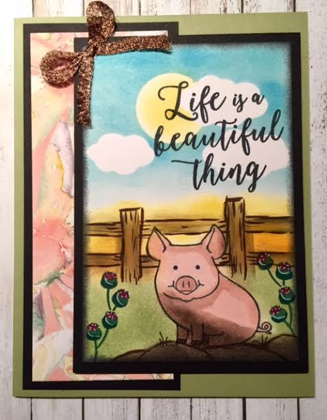 Piggy3