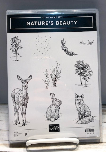 stamping with tamie  nature u0026 39 s beauty by stampin up